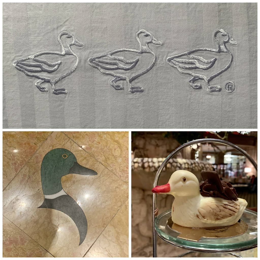 Peabody duck collage