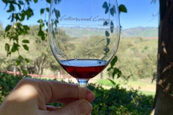 Wine tasting in Santa Maria