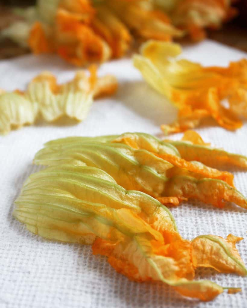 cleaned zucchini flowers