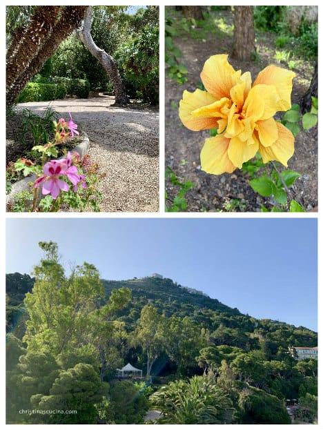 palazzo belmonte garden