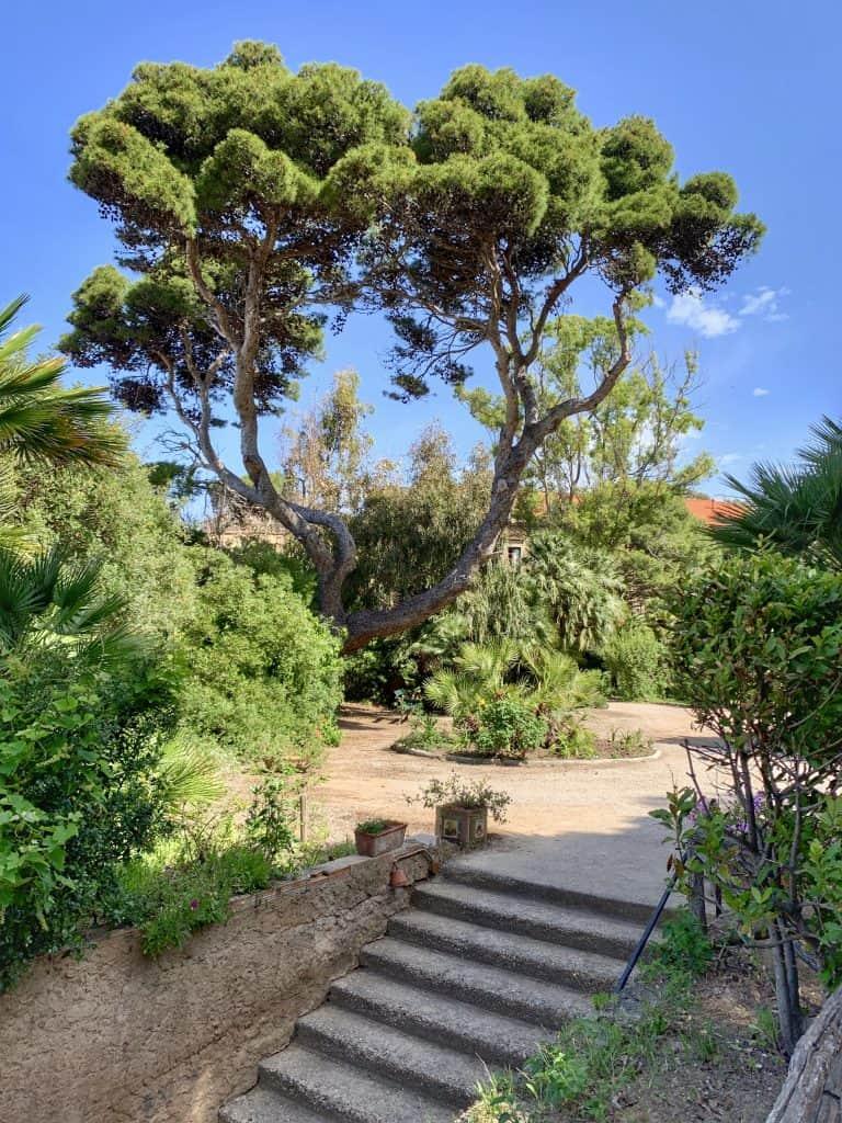 Garden of Palazzo Belmonte