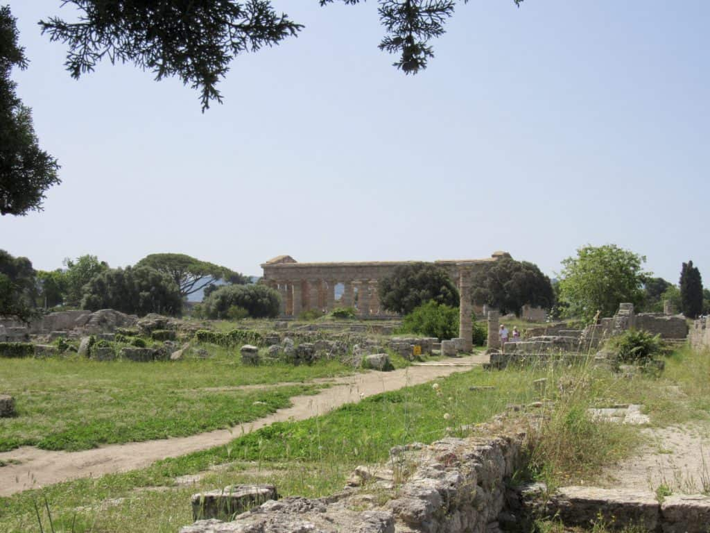view of paestum with a temple in the distance