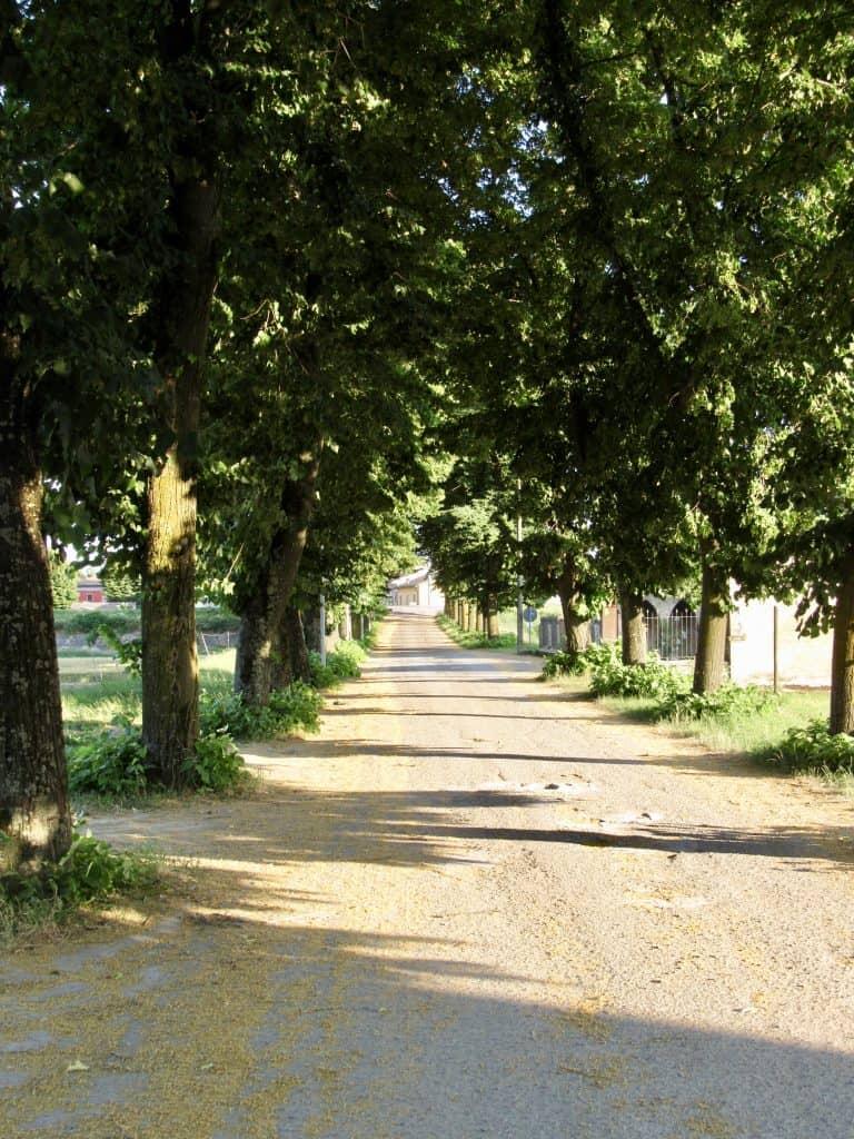 driveway to Antica Corte Pallavicina