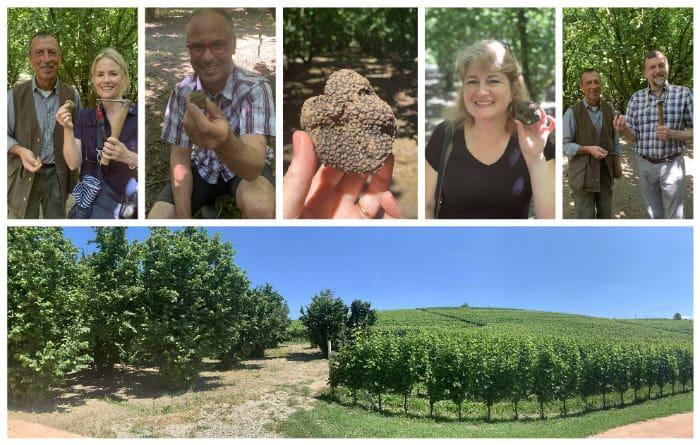 truffle hunting Cadia