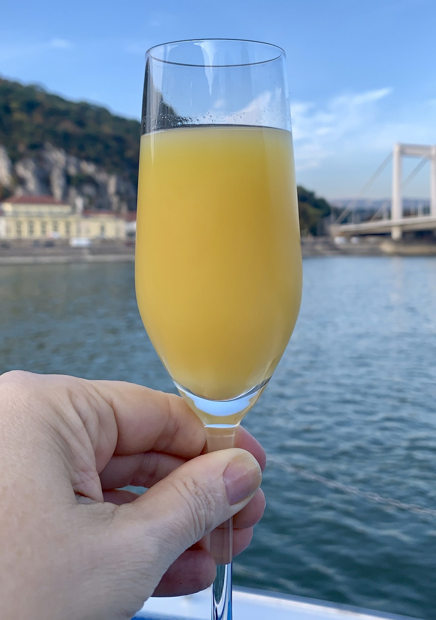 mimosa cruising the Danube