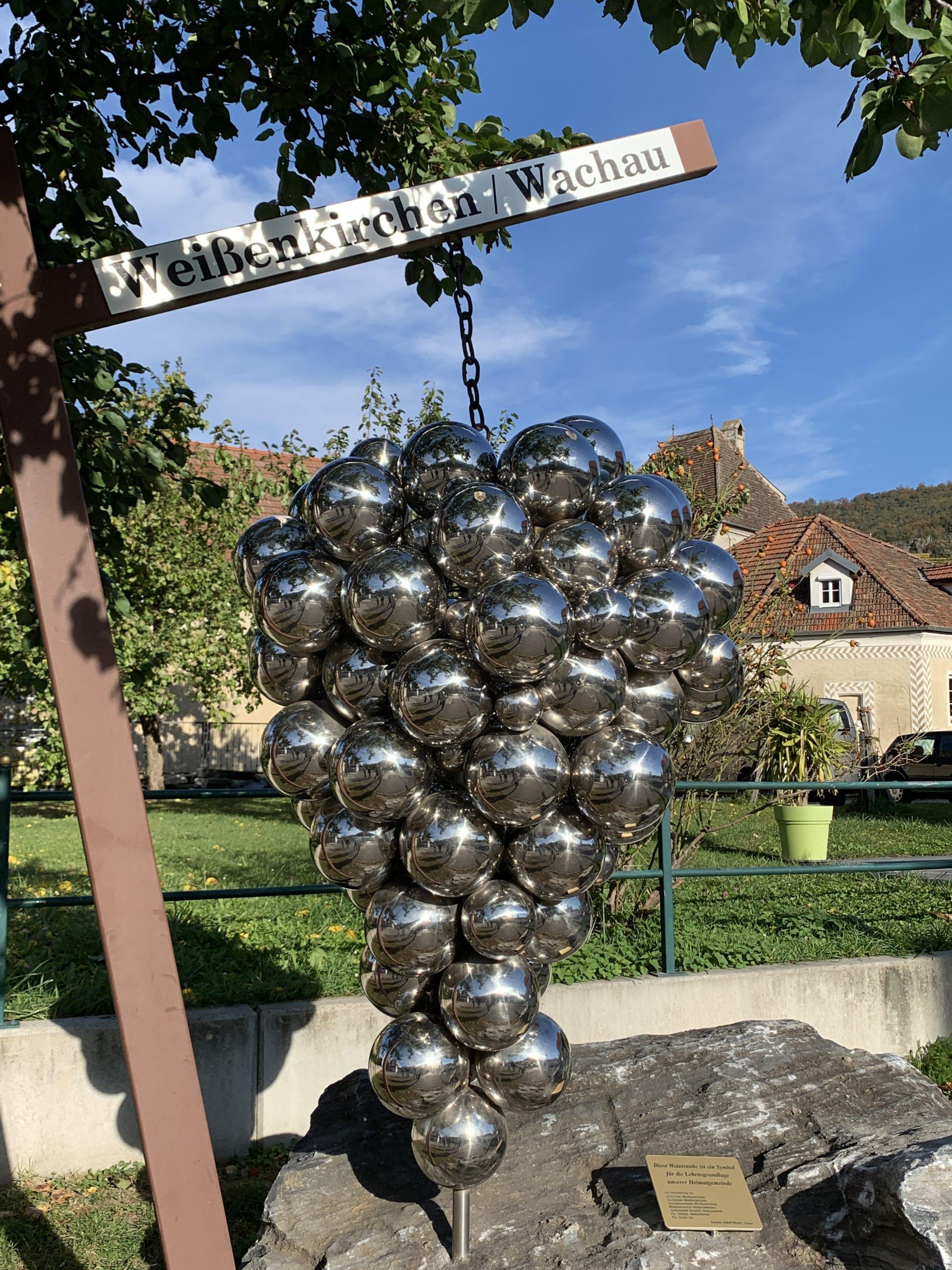 grapes when visiting Weissenkirchen