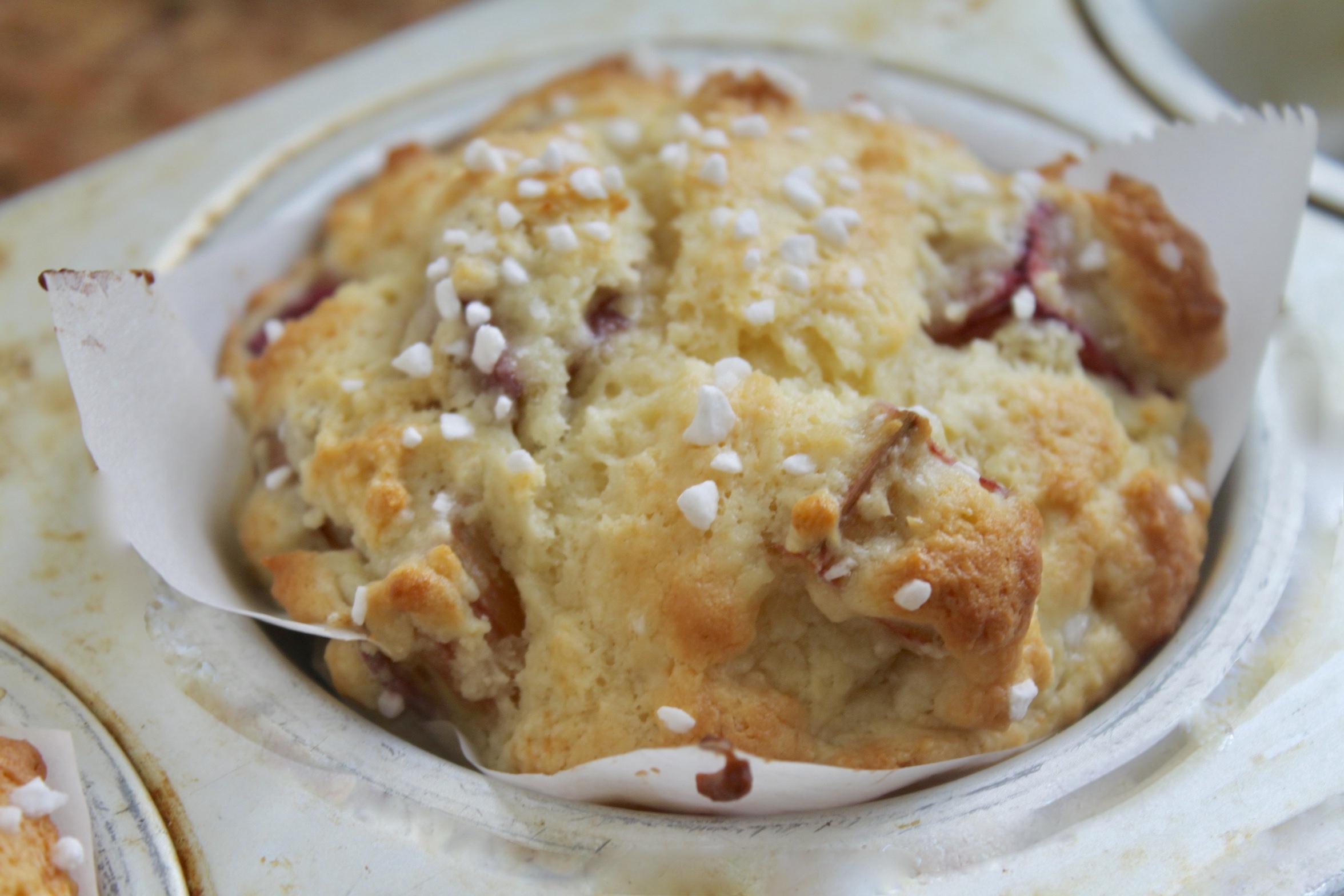 rhubarb muffin in a tin