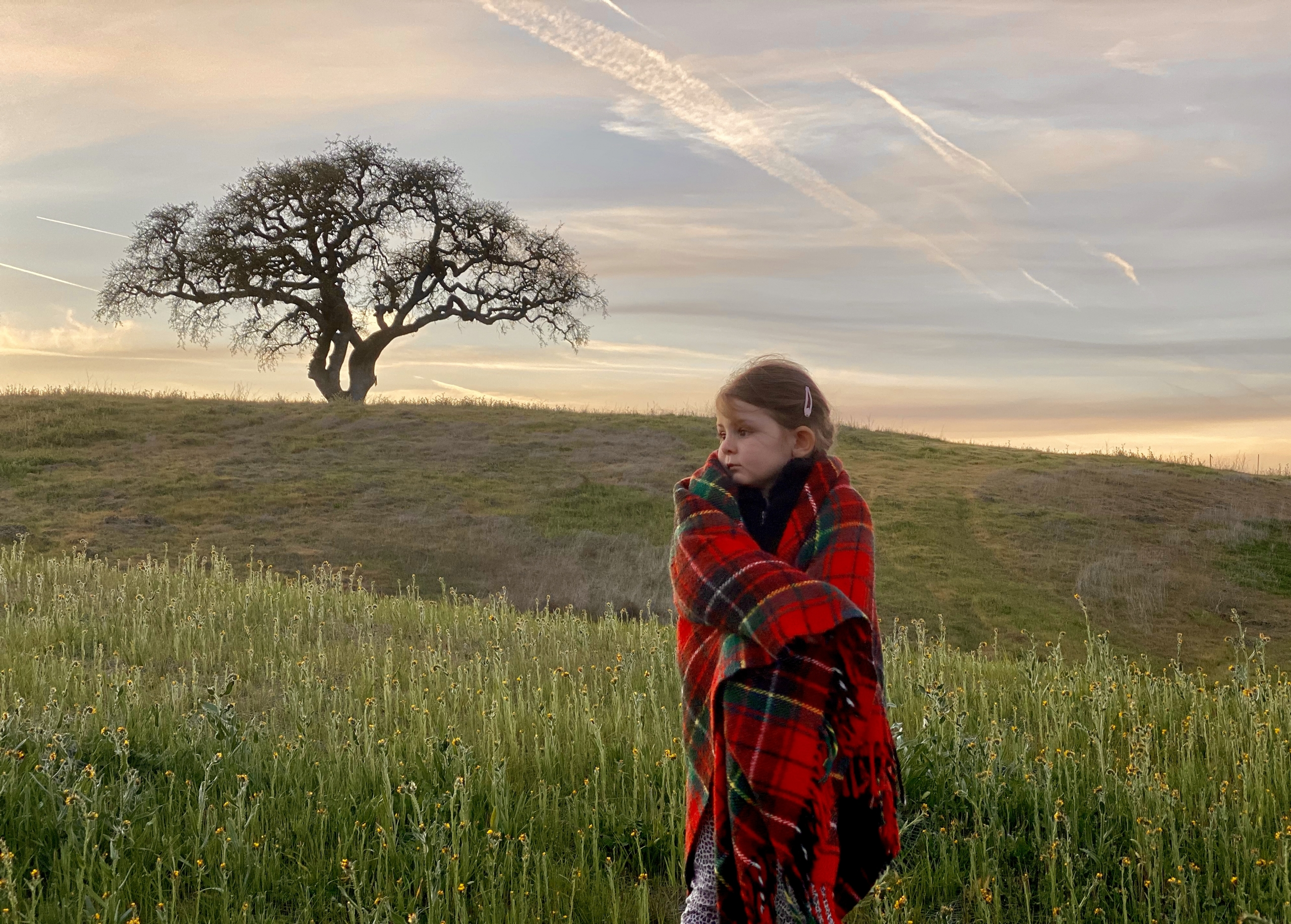 christinas goddaughter and a tree on a hill