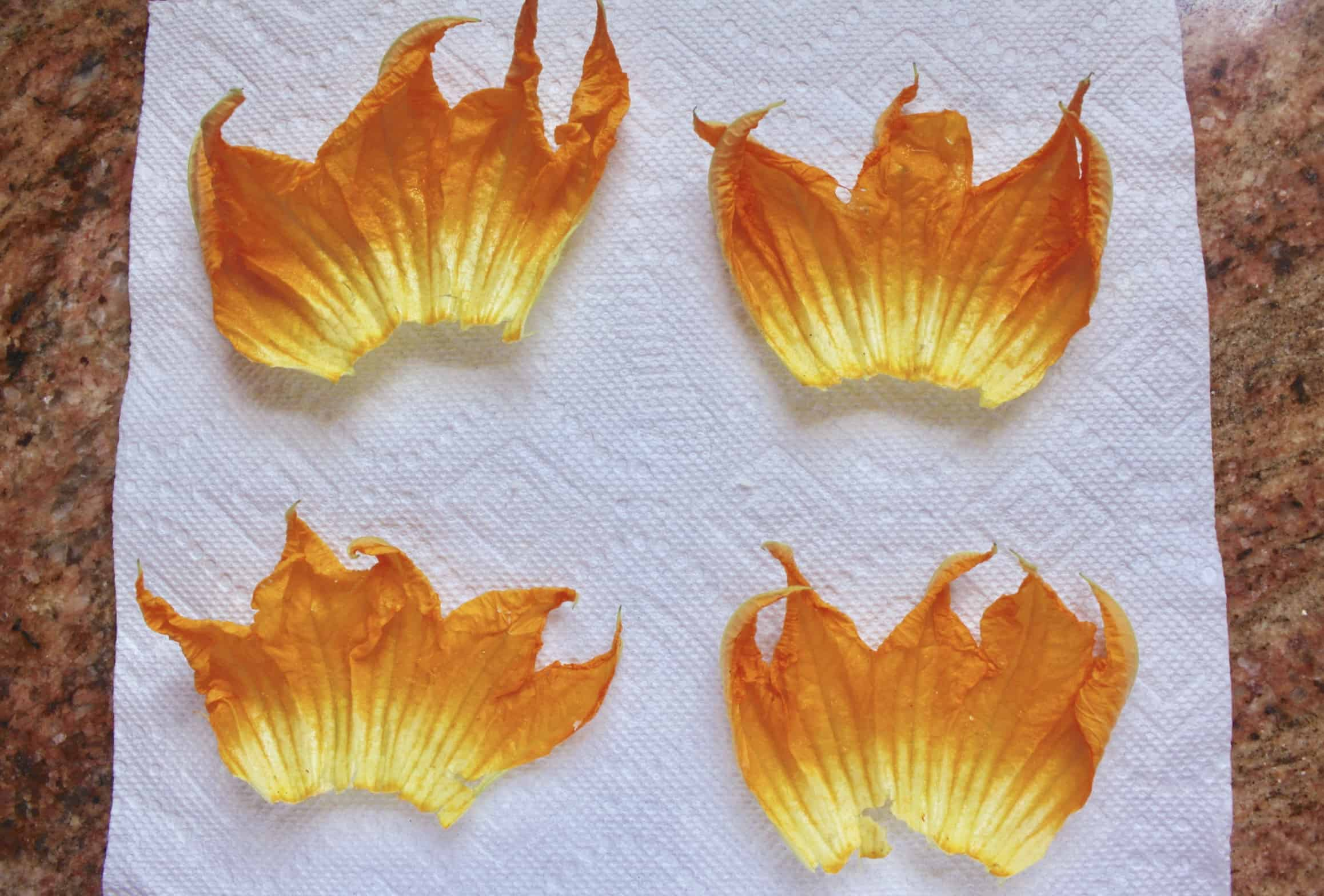 zucchini flowers on a paper towel