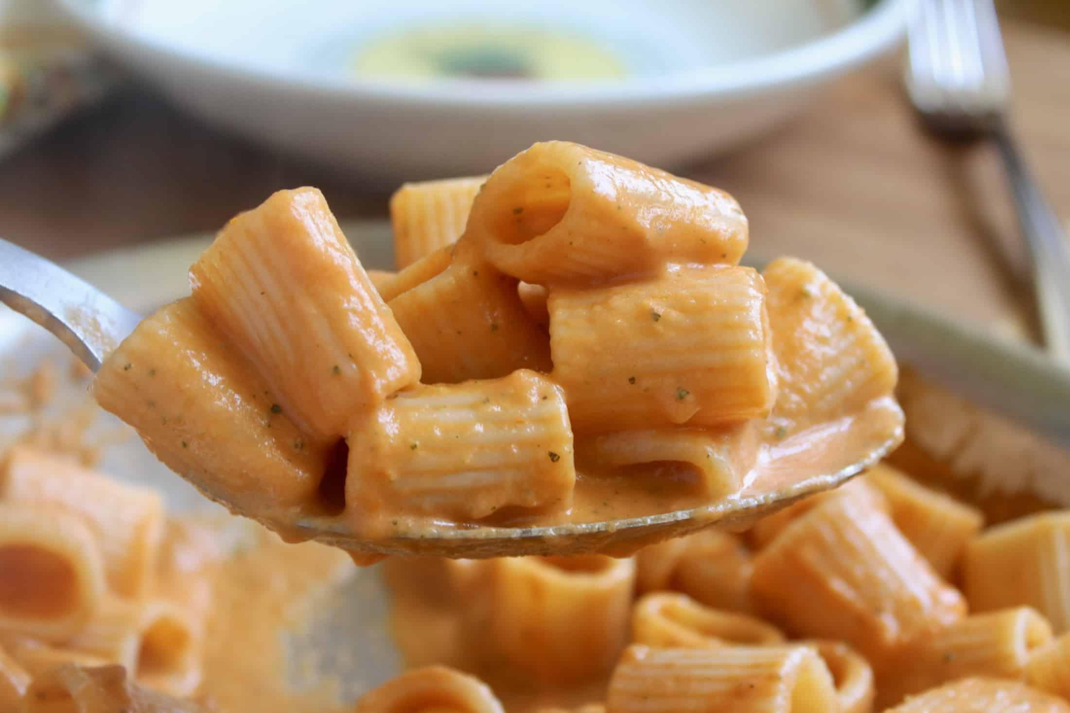 serving zucchini and tomato pasta sauce on mezzi rigatoni