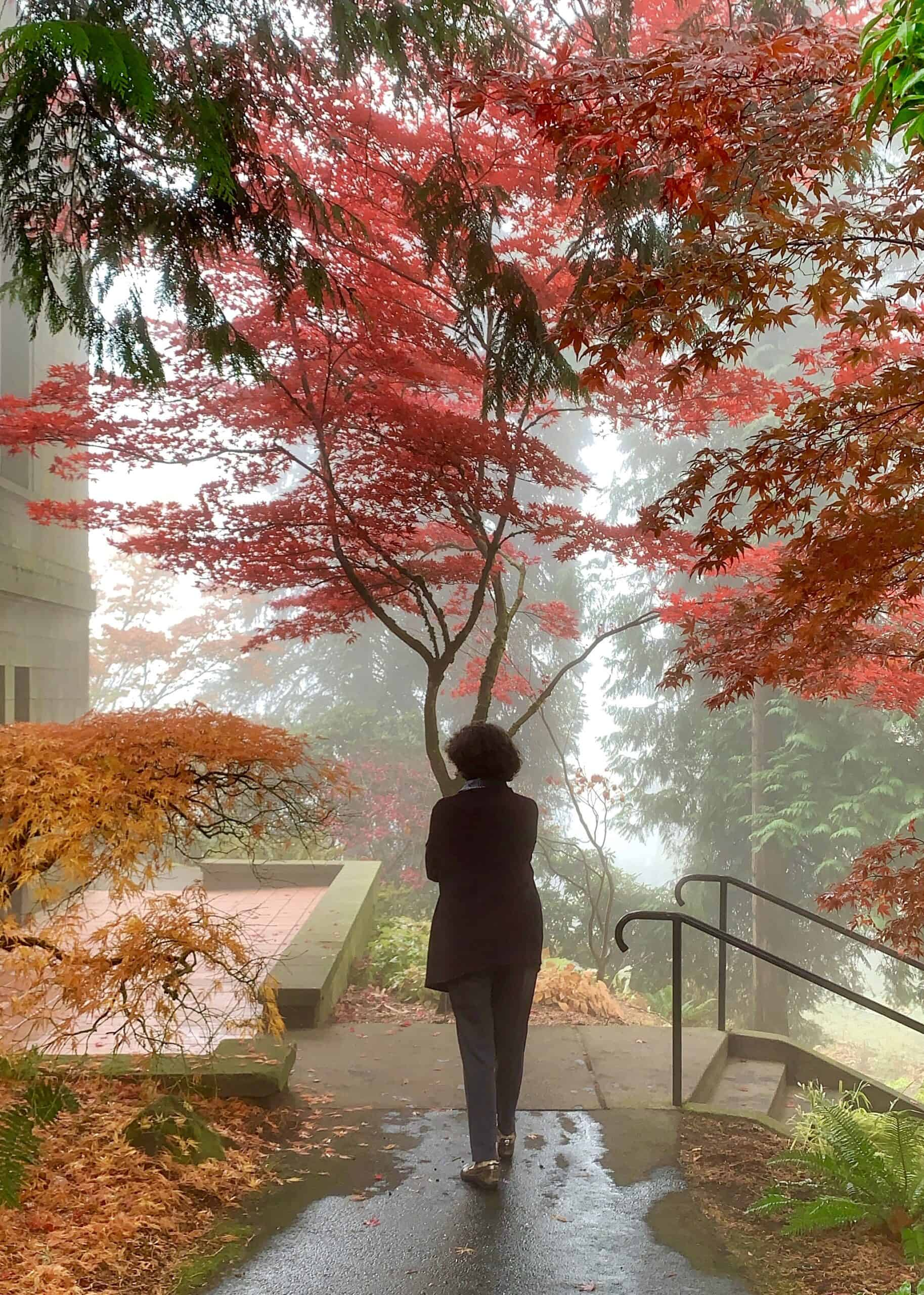 figure in the fog with autumn leaves
