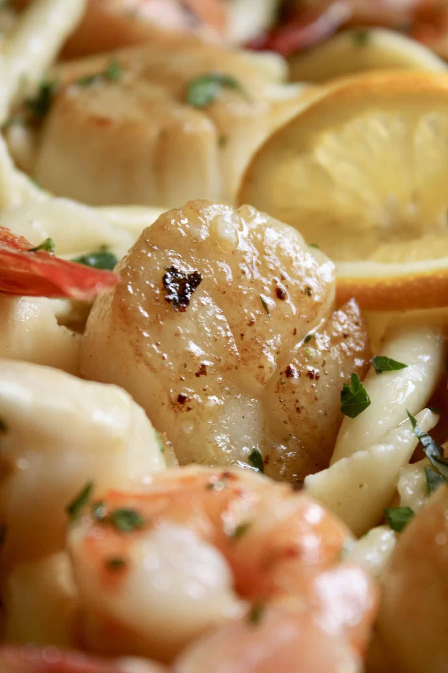 shrimp and scallops in pasta