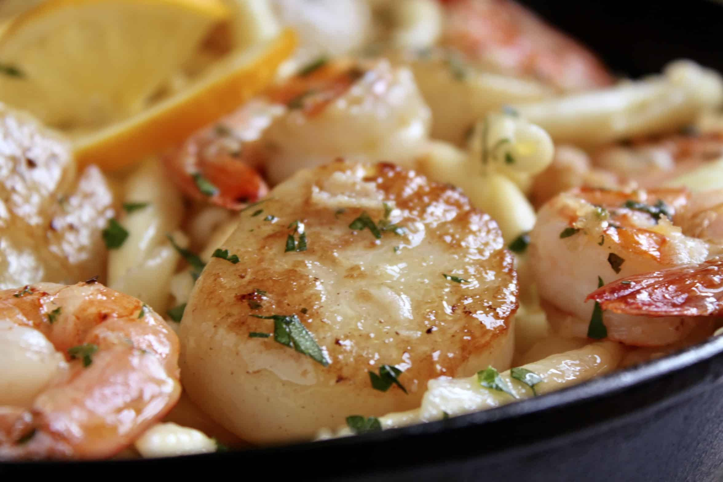 scallop in pasta