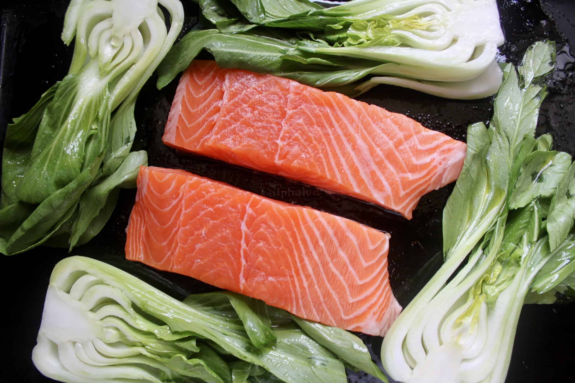 salmon and bok choy on a tray