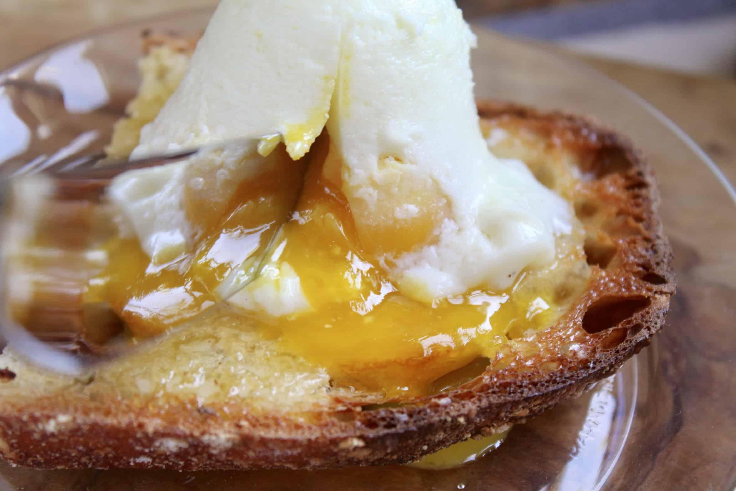 coddled egg on toast