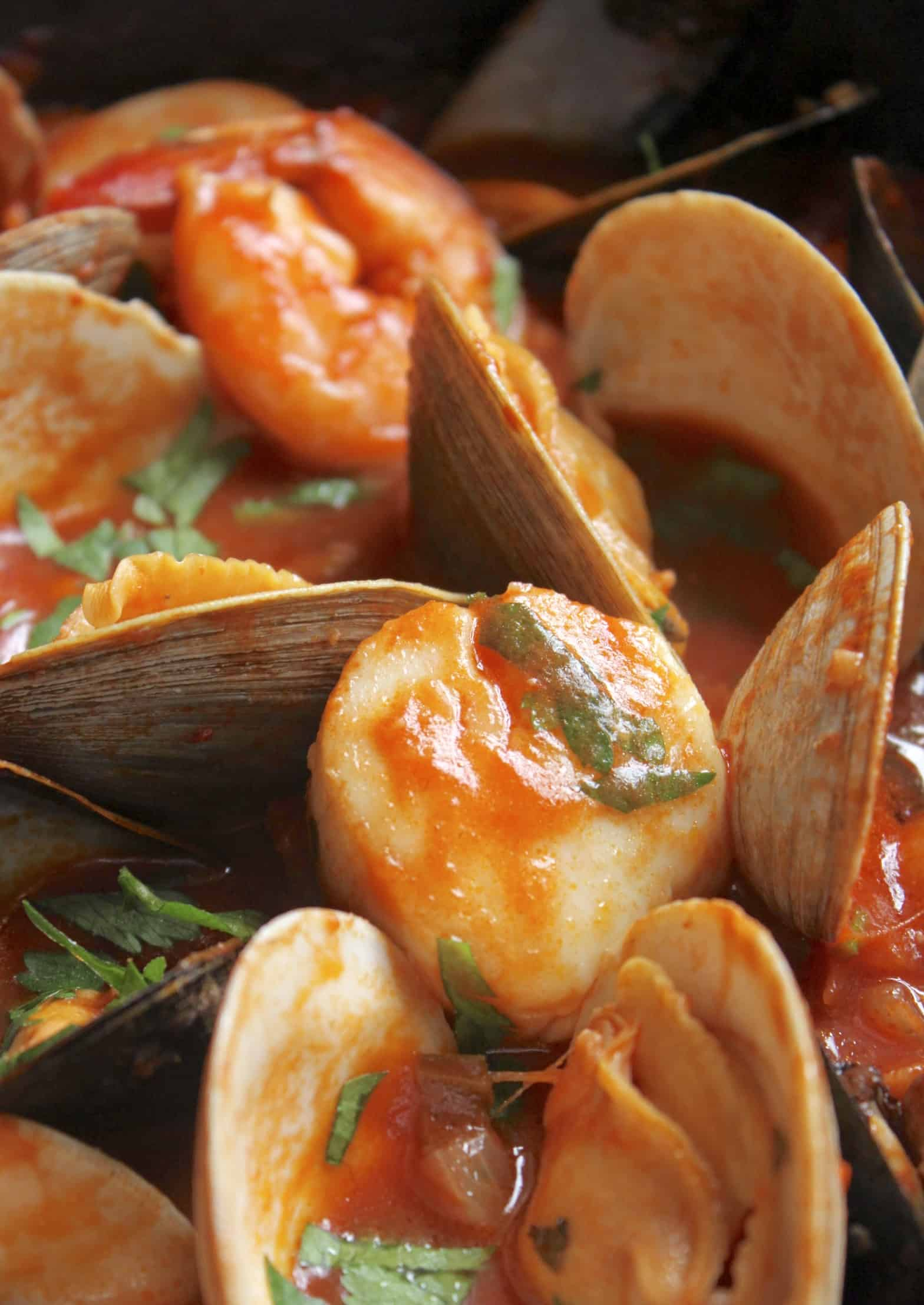 scallop and clams in cioppino