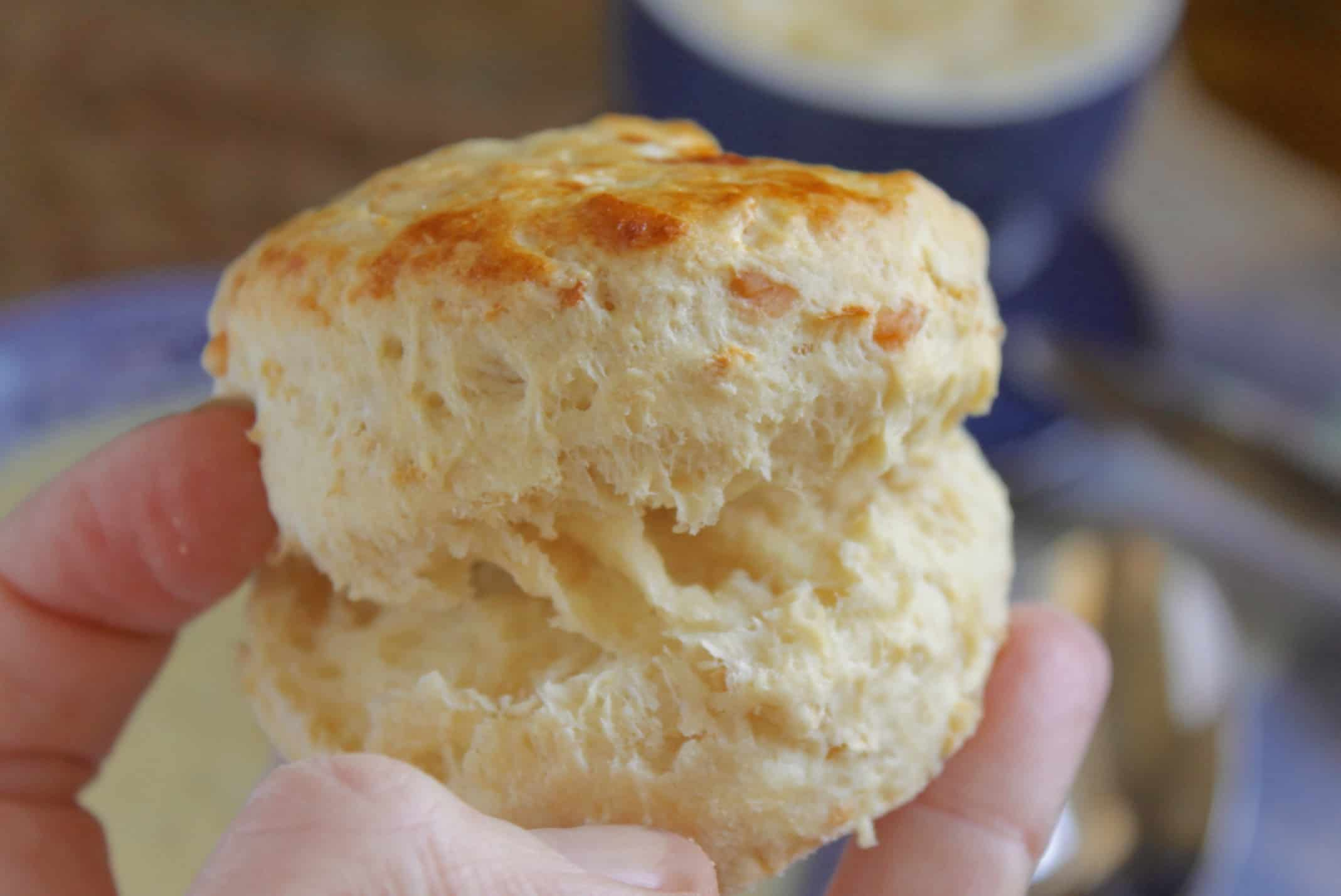 opening a savory parsnip scone