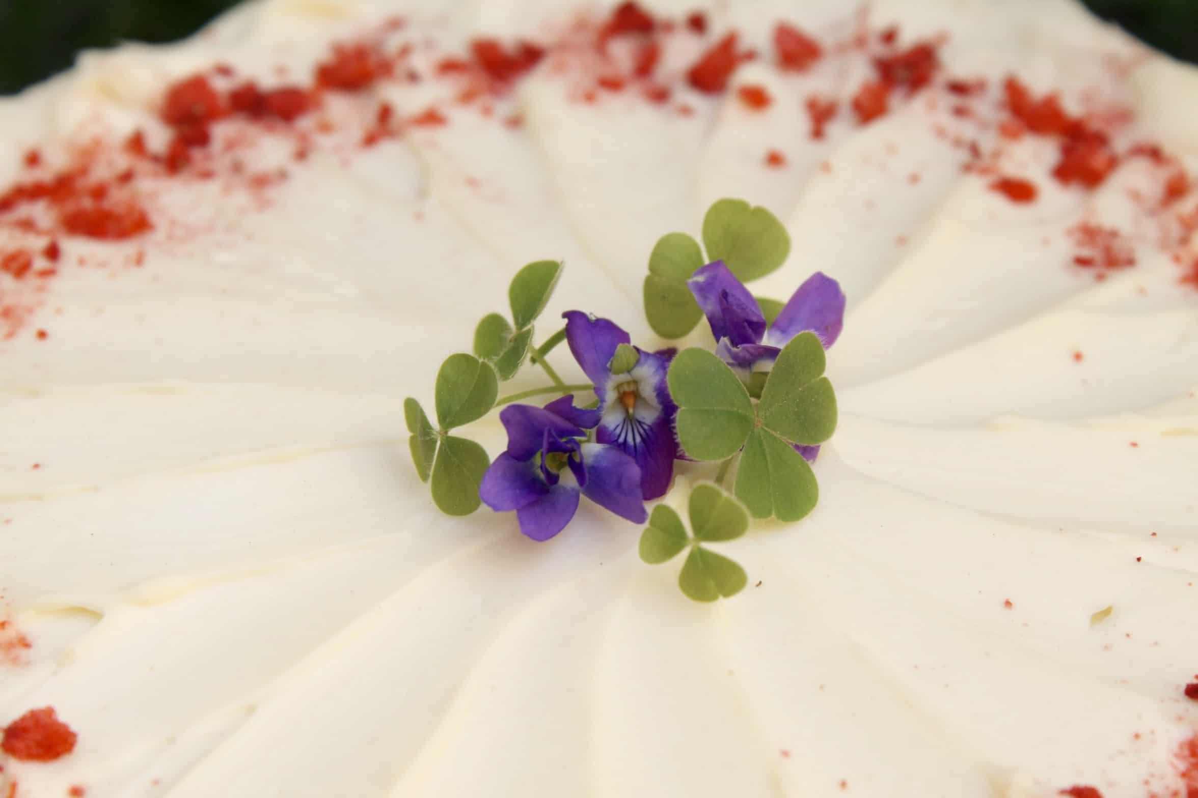violets on cake
