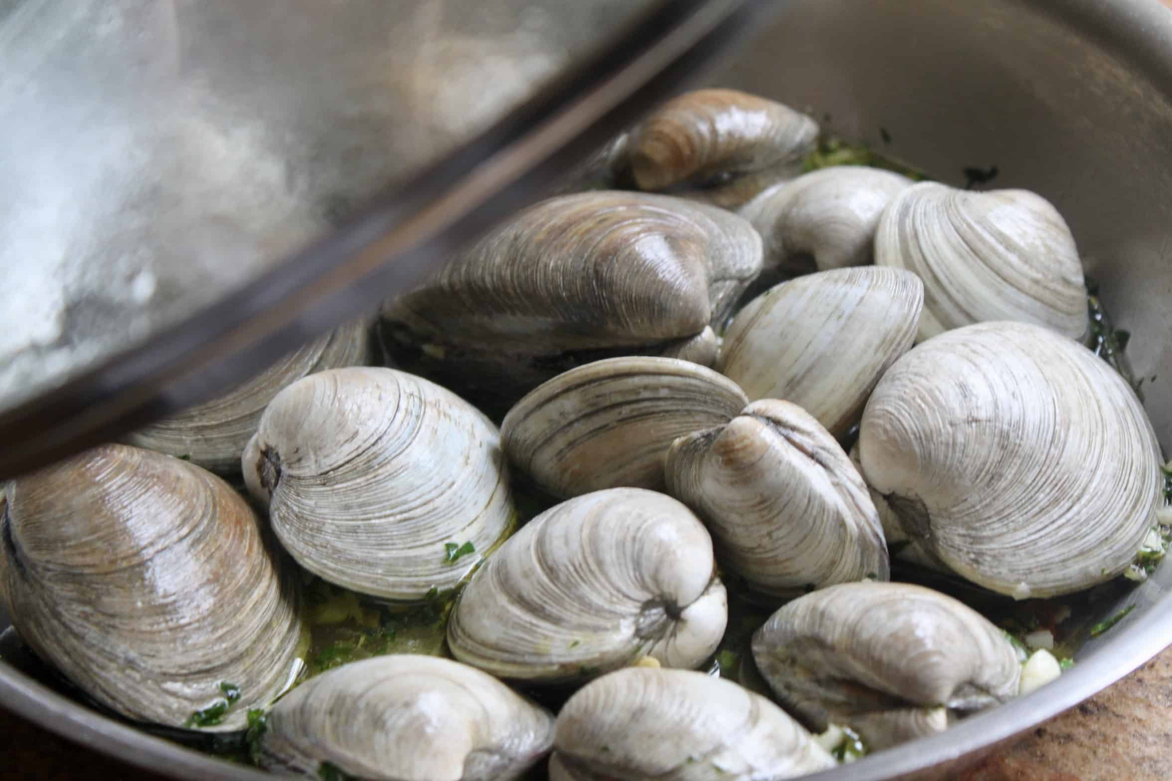 putting lid on clams in pan