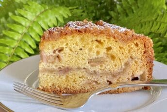 slice of rhubarb cake with fern in background