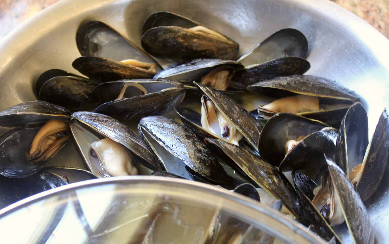 mussels open in a pan