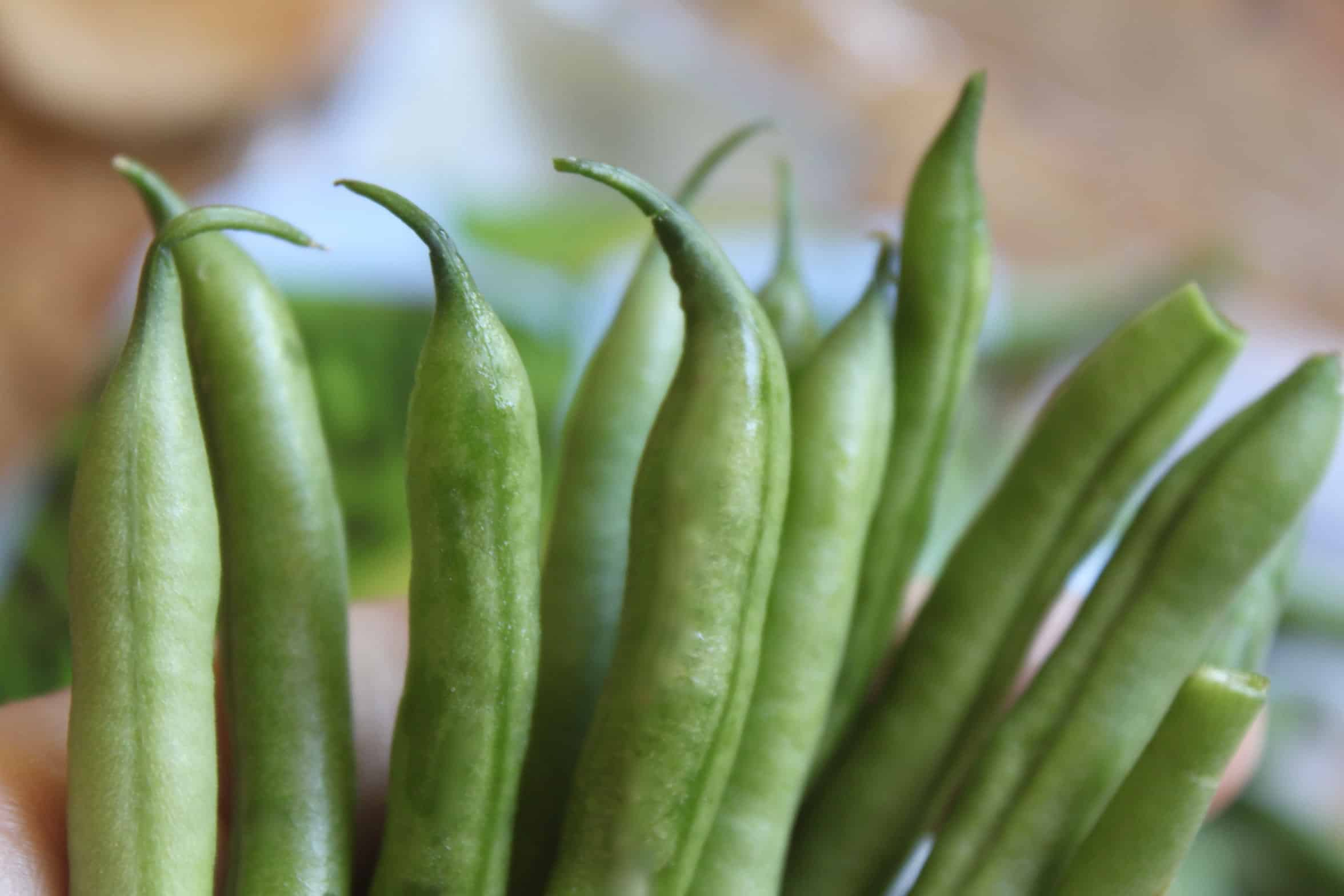 tips of green beans