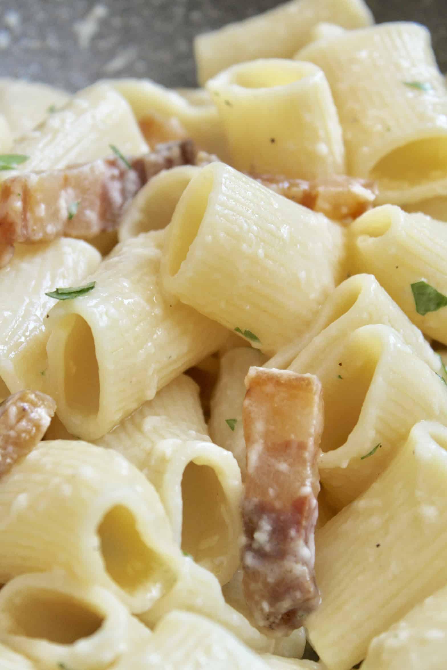 pancetta pasta close up