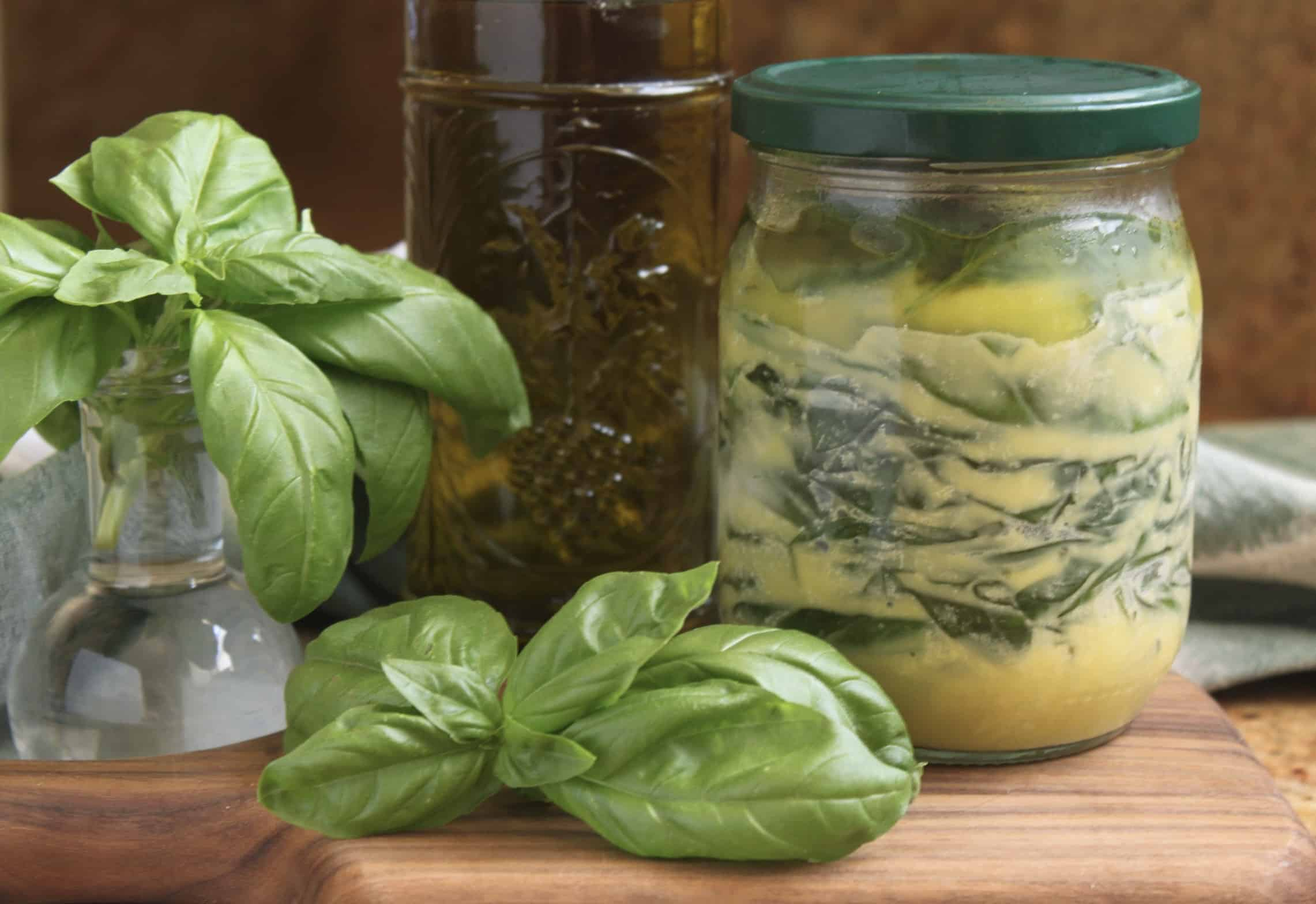 fresh and frozen basil with olive oil